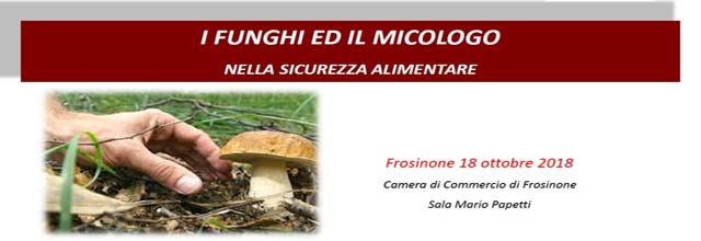 Banner i funghi ed il micologo nella Sicurezza Alimentare